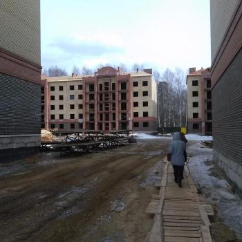 ЖК Берендеевы пруды (Кострома) – фото №3
