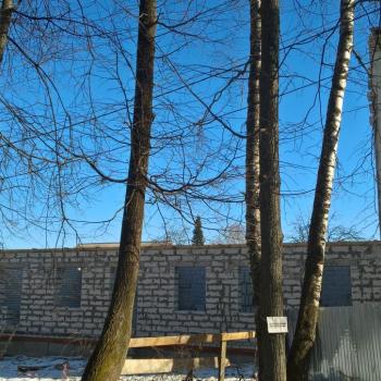 ЖК на Крупской (Кострома) – фото №4