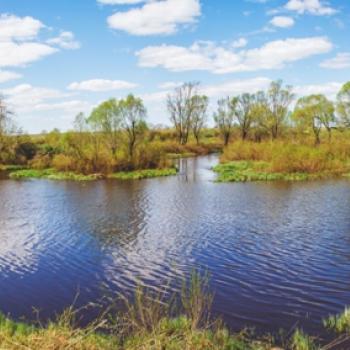 ЖК Грин Парк Солотча (Рязань) – фото №1