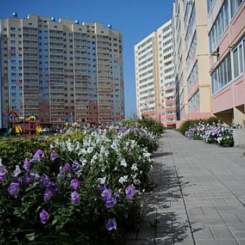 Микрорайон Юго-Западный (Ульяновск) – фото №3