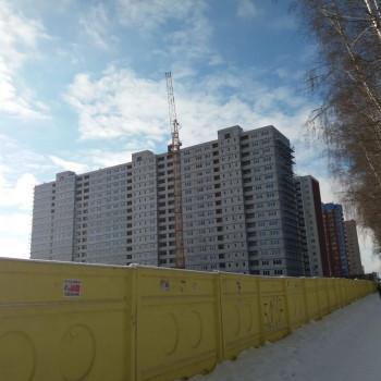 Микрорайон Боровое (Воронеж) – фото №5