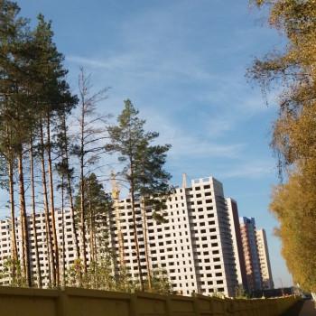 Микрорайон Боровое (Воронеж) – фото №12