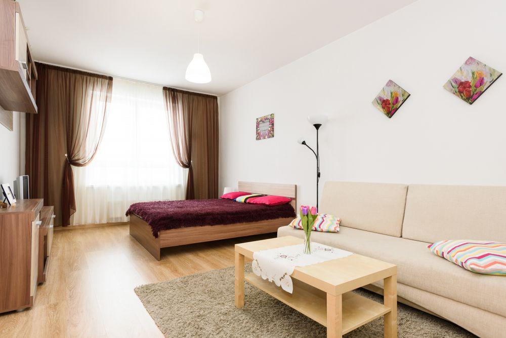 Екатеринбург — 1-комн. квартира, 46 м² – Московская, 198 (46 м²) — Фото 1