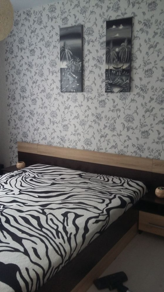 Кострома — 1-комн. квартира, 34 м² – Панинская (34 м²) — Фото 1