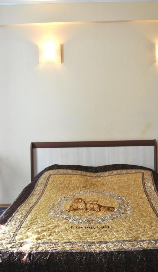 Воронеж — 1-комн. квартира, 40 м² – Ленина пл, 9 (40 м²) — Фото 1