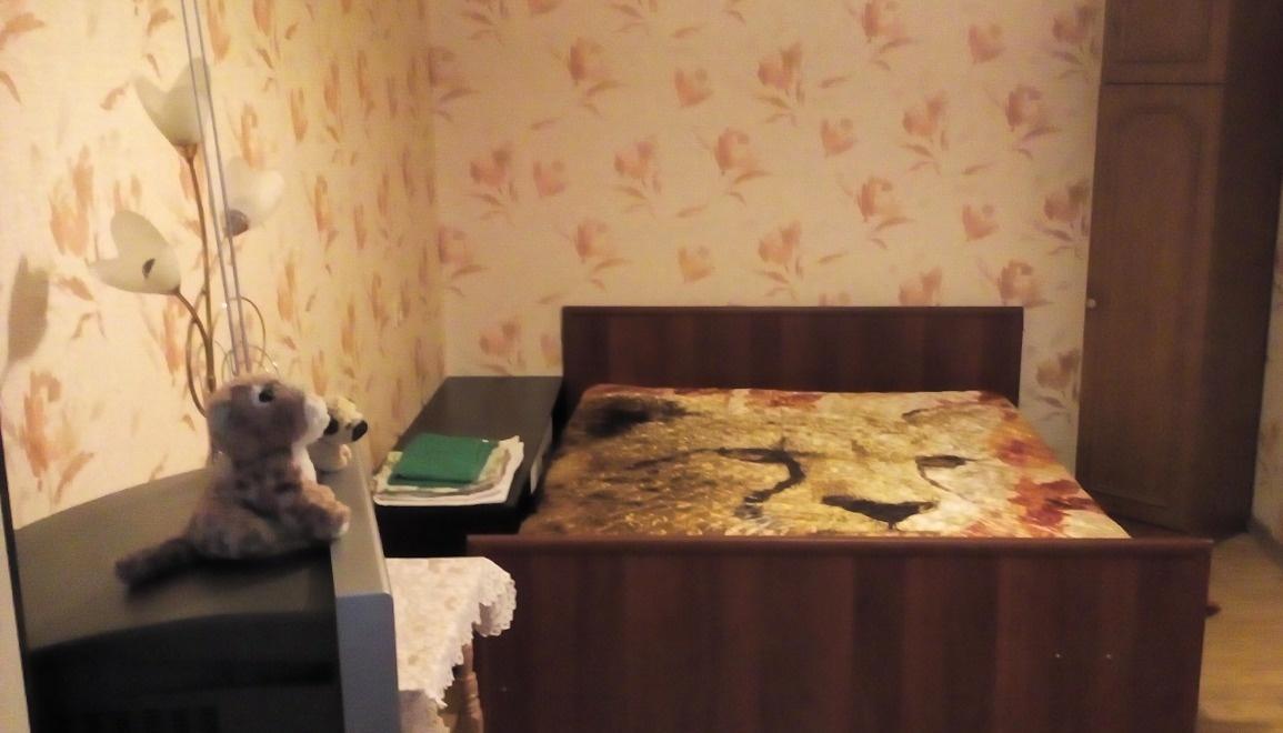 Архангельск — 1-комн. квартира, 31 м² – Обводный Канал пр-кт, 95 (31 м²) — Фото 1