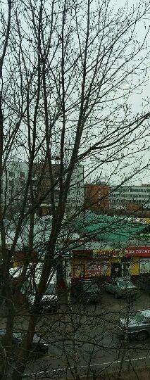 Псков — 2-комн. квартира, 56 м² – Коммунальная, 51 (56 м²) — Фото 1
