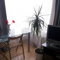 Екатеринбург — 1-комн. квартира – Бажова, 68 — Фото 11