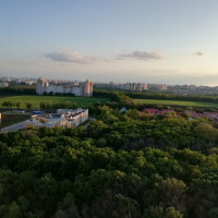 Воронеж — Студия, 32 м² – Ломоносова фото100%, 84свободна (32 м²) — Фото 6