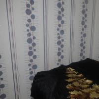 Ярославль — 2-комн. квартира, 43 м² – Добрынина (43 м²) — Фото 4