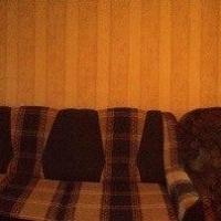 Ярославль — 2-комн. квартира, 42 м² – Чкалова, 49 (42 м²) — Фото 3