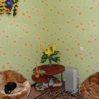 Ярославль — 1-комн. квартира, 30 м² – Саукова, 21 (30 м²) — Фото 4
