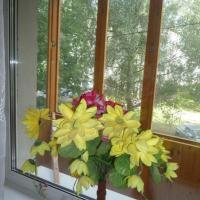 Ярославль — 1-комн. квартира, 30 м² – Урицкого, 67 (30 м²) — Фото 2