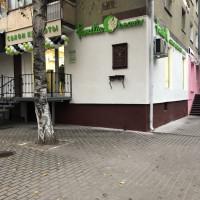 Воронеж — 1-комн. квартира, 32 м² – Никитинская, 35 (32 м²) — Фото 5