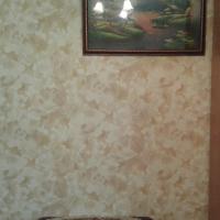 Воронеж — 1-комн. квартира, 18 м² – Березовая Роща д, 30 (18 м²) — Фото 8
