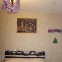 Воронеж — 1-комн. квартира, 45 м² – 9 Января, 233/32 (45 м²) — Фото 13