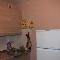 Воронеж — 1-комн. квартира, 31 м² – Кольцовская, 17 (31 м²) — Фото 5