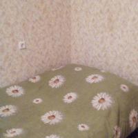 Воронеж — 1-комн. квартира, 42 м² – Шишкова, 146 (42 м²) — Фото 3