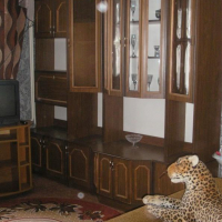 2-комнатная квартира, этаж 4/4, 37 м²