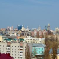 Воронеж — 1-комн. квартира, 35 м² – Челюскинцев, 101Б (35 м²) — Фото 3