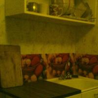 Воронеж — 1-комн. квартира, 50 м² – Шишкова, 146В (50 м²) — Фото 3