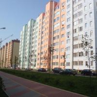 Воронеж — 1-комн. квартира, 43 м² – Шишкова, 142/5 (43 м²) — Фото 5