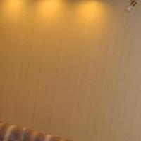 Воронеж — 1-комн. квартира, 45 м² – Революции 1905 года  31 д (45 м²) — Фото 11