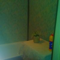 Воронеж — 1-комн. квартира, 31 м² – Домостроителей, 17 (31 м²) — Фото 3