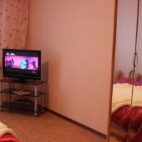 Брянск — 1-комн. квартира, 55 м² – Красноармейская, 100 (55 м²) — Фото 5