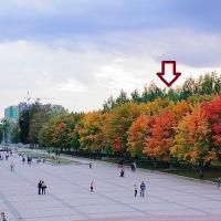 Брянск — 1-комн. квартира, 44 м² – Бежицкая  дом 1  корпус, 6 (44 м²) — Фото 7