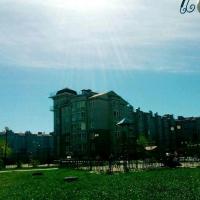 Белгород — 1-комн. квартира, 40 м² – Макаренко (40 м²) — Фото 4