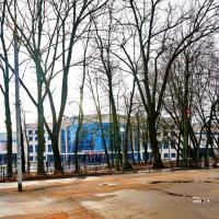 Смоленск — 1-комн. квартира, 36 м² – Черняховского  13  Матросова 5А  Кирова, 26А (36 м²) — Фото 4