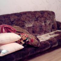 Киров — 1-комн. квартира, 52 м² – Мопра, 110 (52 м²) — Фото 3