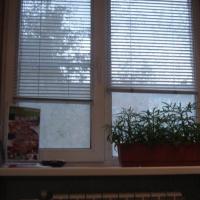 Нижний Новгород — 2-комн. квартира, 45 м² – Светлоярская, 28 (45 м²) — Фото 8