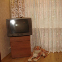 Нижний Новгород — 2-комн. квартира, 45 м² – Светлоярская, 28 (45 м²) — Фото 10