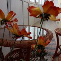 Саратов — 1-комн. квартира, 52 м² – Луговая улица, 67/69 (52 м²) — Фото 3