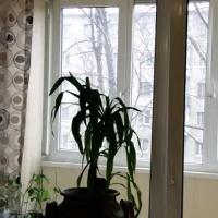 Вологда — 1-комн. квартира, 39 м² – Г вологда. Проспект Победы, 70 (39 м²) — Фото 3