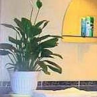 Астрахань — 1-комн. квартира, 50 м² – Ахшарумова ул (50 м²) — Фото 6