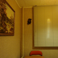 Архангельск — 1-комн. квартира, 28 м² – Улица Тимме, 10к2 (28 м²) — Фото 2
