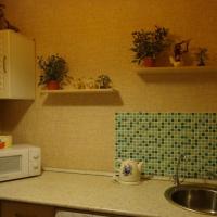 Архангельск — 1-комн. квартира, 28 м² – Улица Тимме, 10к2 (28 м²) — Фото 3