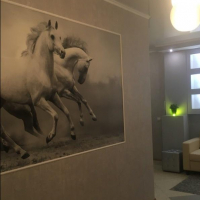 Краснодар — 1-комн. квартира, 42 м² – Симиренко, 18 (42 м²) — Фото 10