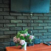Краснодар — 1-комн. квартира, 31 м² – Песчаная  дом, 11 (31 м²) — Фото 11