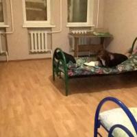 2-комнатная квартира, этаж 1/1, 94 м²