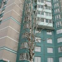 Ижевск — 1-комн. квартира, 31 м² – Подлесная седьмая, 71 (31 м²) — Фото 5