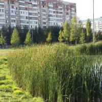 Казань — 2-комн. квартира, 45 м² – Меридианная, 11 (45 м²) — Фото 3