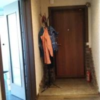 Тюмень — 2-комн. квартира, 50 м² – Жуковского (50 м²) — Фото 11
