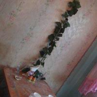 Кемерово — 1-комн. квартира, 40 м² – Терешковой, 21 (40 м²) — Фото 6