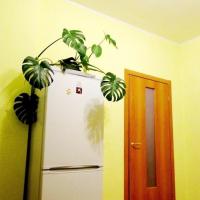 Екатеринбург — 1-комн. квартира, 55 м² – Щорса, 103 (55 м²) — Фото 3