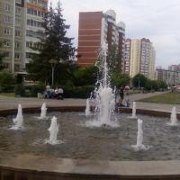 Екатеринбург — 2-комн. квартира, 65 м² – Академика Шварца, 20/2 (65 м²) — Фото 3