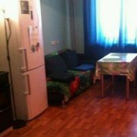 Екатеринбург — 1-комн. квартира, 49 м² – Готвальда, 14а (49 м²) — Фото 5